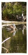 Pelican Temper Beach Towel