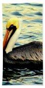 Pelican Waters Beach Towel