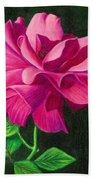 Pencil Rose Beach Towel by Janice Dunbar