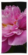 Peony Blossoms Beach Sheet