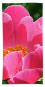 Peony Perfection Beach Towel