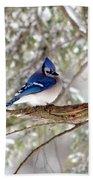 Winter Blue Beach Sheet