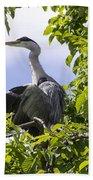 Perching Heron Beach Towel
