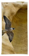 Peregrine Falcon Flying By Cliff Beach Towel