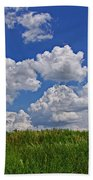 Perfect Day Beach Towel