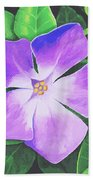 Periwinkle Beach Towel