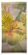 Peruvian Lily Framed Beach Towel