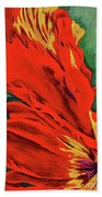 Petals Of Fire Two Beach Towel