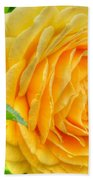 Petals Of Sunshine Beach Towel