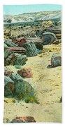 Petrified Forest Beach Towel