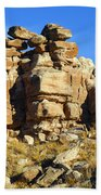 Petrified Forest Rock Formations Beach Towel