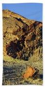 Petrified Log Beach Towel