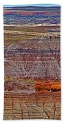 Petrified Log On Overlook Near Blue Mesa In Petrified Forest National Park-arizona   Beach Towel