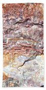 Petrified Rings Beach Towel