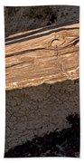 Petrified Wood On A Pedestal Beach Towel