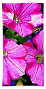 Petunia Rhapsody Beach Towel
