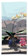 Phalaenopsis Orchid In Sunny Window Beach Towel