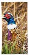 Pheasant Portrait Beach Towel