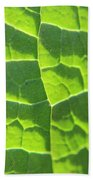 Photosynthesis  Beach Towel