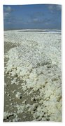Phytoplankton Bloom On Beach Beach Sheet