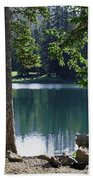 Picnic By The Lake Beach Towel