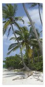 Picture Perfect Paradise Beach Towel