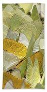Pierid Butterfly Pieridae Puddling Beach Towel