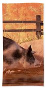 Pig Race Beach Towel