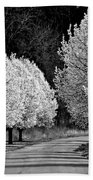 Pigeon Mountain Dogwoods In Black And White Beach Towel