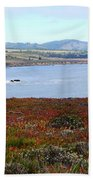 Pigeon Point Bay Beach Towel