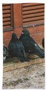 Pigeons Beach Towel
