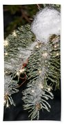 Pine Branch With Ice And Stars Beach Towel