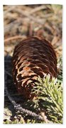Pine Cone And Small Branch Beach Towel
