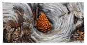 Pine Cone In A Knot  Beach Towel