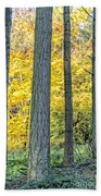 Pine Forest In The Autumn Beach Towel