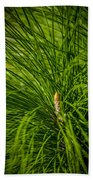 Pine Needles Beach Towel