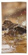 Pine Siskin Beach Towel