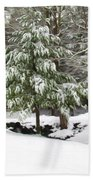 Pine Tree Covered With Snow 2 Beach Towel