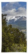 Pine Trees In The Rocky Mountain National Park Beach Towel