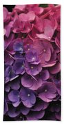 Pink And Blue Hydrangea Beach Towel