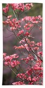 Pink And Purple Spring Trees Beach Towel by Carol Groenen