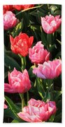 Pink And Red Ruffly Tulips Square Beach Towel