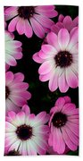 Pink And White Daisies Beach Towel