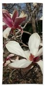 Pink And White Spring Magnolia Beach Towel