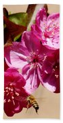 Bee Flying Pink Blossoms 031015a Beach Towel