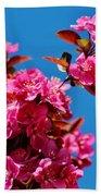 Pink Blossoms Blue Sky 031015aa Beach Towel