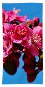 Pink Blossoms Closeup 031015ab Beach Towel