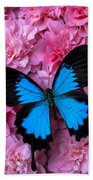 Pink Camilla And Blue Butterfly Beach Towel