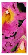 Pink Cattleya Orchid Beach Towel