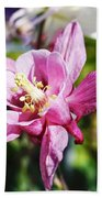 Pink Columbine Beach Towel